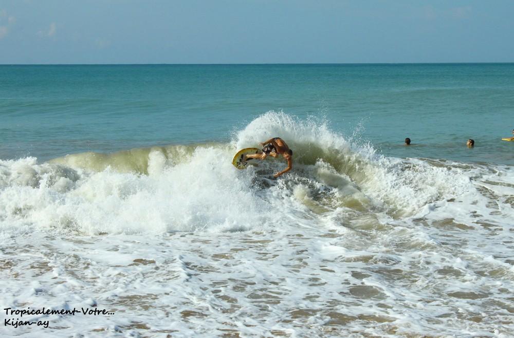 Photo Tropicale... Img_7712