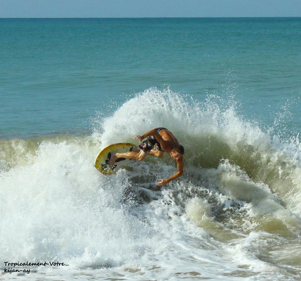 Photo Tropicale... Img_7714