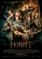 The Hobbit: The Desolation of Smaug 20950710