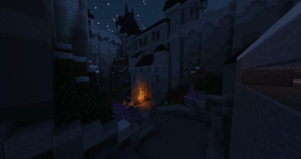 Gros château (nom à définir) 2021-019