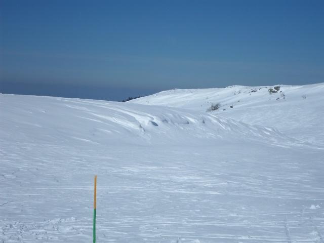 sport d'hiver  Sam_0515