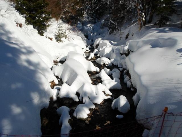 sport d'hiver  Sam_0524