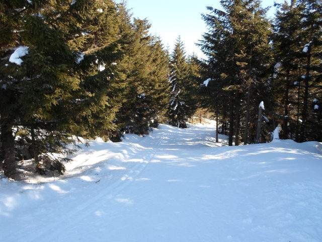 sport d'hiver  Sam_0525