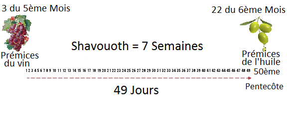 Shavouoth-Pentecôte Pleinement révélée - Livre des Jubilés Omer311