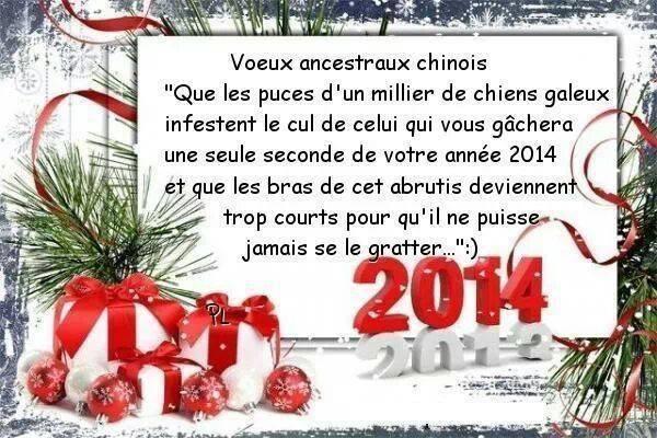 meilleurs voeux 2014 Nouvel10