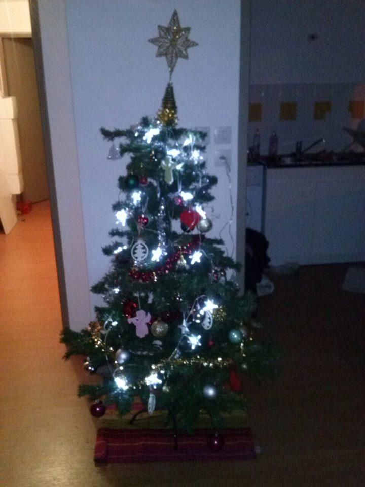 C'est bientôt Noël: montre moi ton sapin  !!  - Page 2 Sapin_10