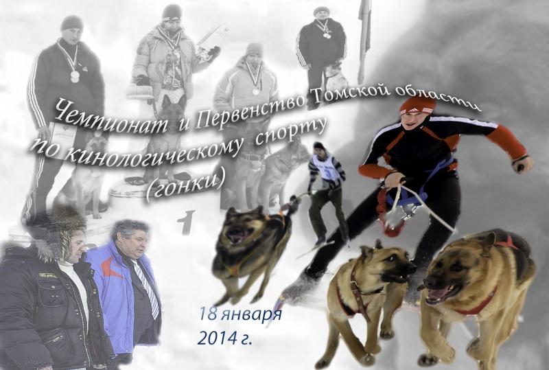 18 января 2014 г. Чемпионат и Первенство Томской области по кинологическому спорту (гонка) Images10