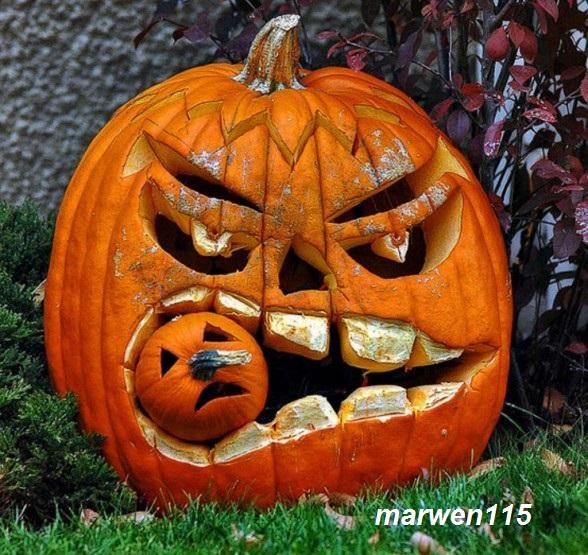 Concours Photo : Spécial Halloween sur Pinterest Marwen11