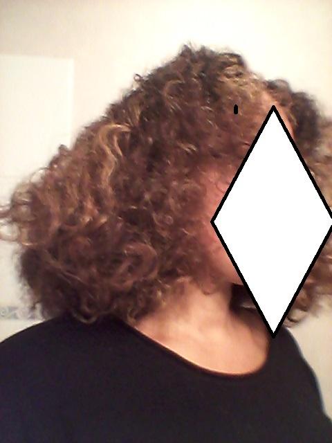 Une coiffure, moultes natures, moultes résultats. - Page 3 Choux310