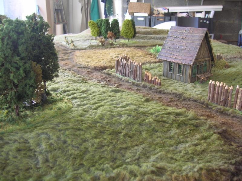 Règles maison Armies of Arcana Dscn8912