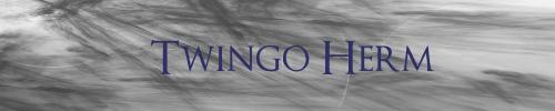 Twingo c3g ne veut plus démarrer - Page 2 Image10