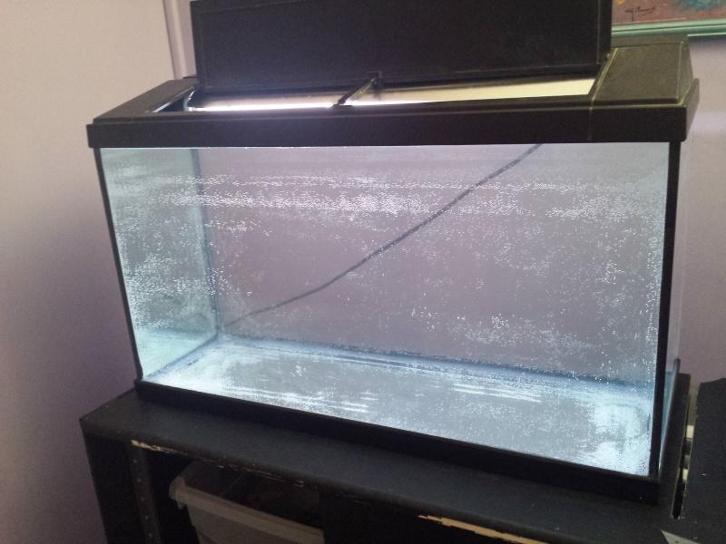 nettoyage aquarium vinaigre blanc et bicarbonate. Black Bedroom Furniture Sets. Home Design Ideas