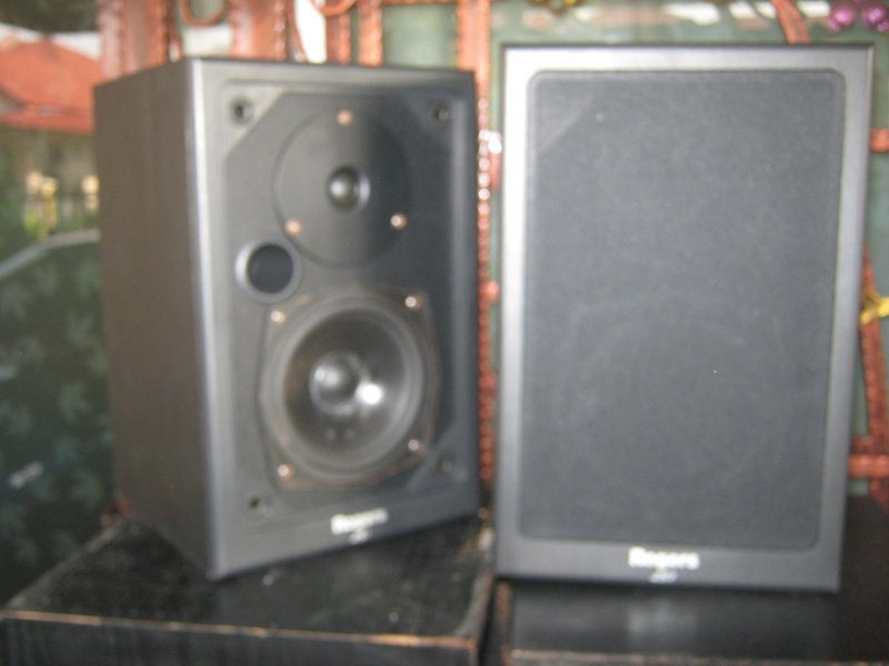 Rogers LS-I speaker Img_0519