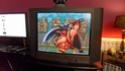 quelle tv utilisez vous pour vos consoles rétro ? - Page 7 Sam_1839