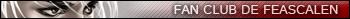 Le jeu musical Feaub110