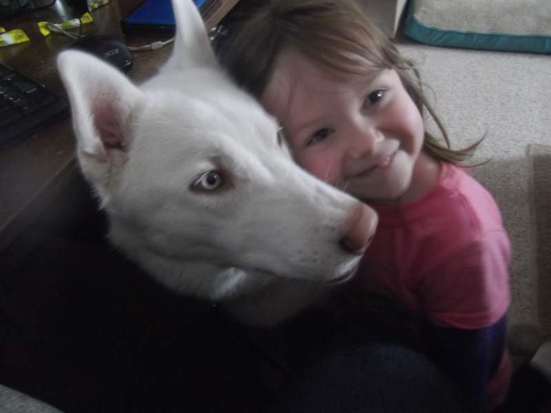 All white huskies, then and now pics please! 00110