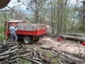 foto dal bosco, i nostri mezzi all'opera - Pagina 2 2014-014
