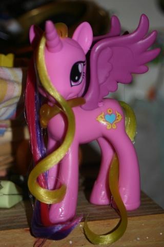 [PHOTOS] Vos plus belles coiffures de poneys ! Img_8811