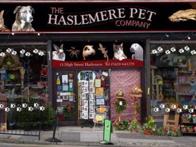 Haslemere Pet Center Image159