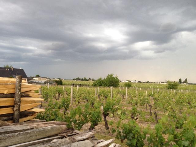 Dégradation orageuse potentiellement active pour ce soir et surtout durant la nuit prochaine. Image31