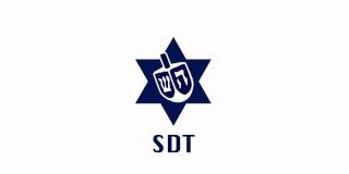 le SDT c'est quoi?  Sdt_dr10