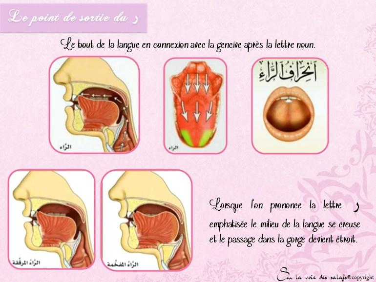 Première Règle: le noun non vocalisée & les voyelles doubles Al_idh16