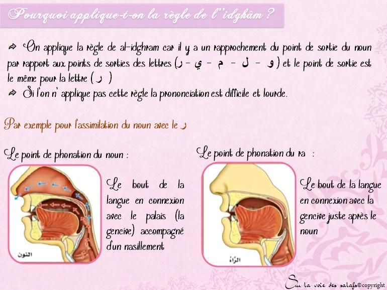 Première Règle: le noun non vocalisée & les voyelles doubles Al_idh20