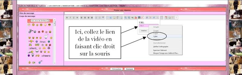 INSERER UNE VIDEO DAILYMOTION SUR LE FORUM 1510