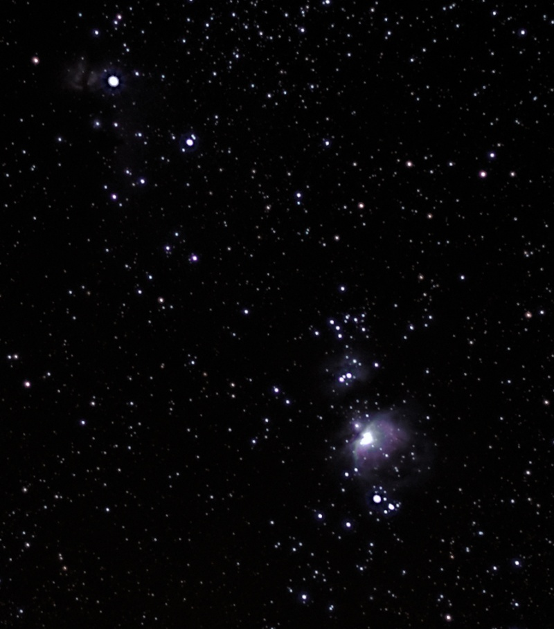 Orion - 28/11/2013 _orion10