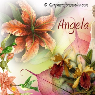 Like Us On Facebook! and get a free Signature Tag Kit Angela12