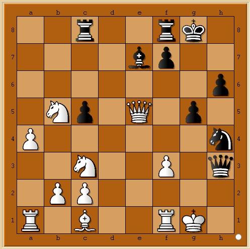 Je jouerai le championnat d'Islande! Chess210