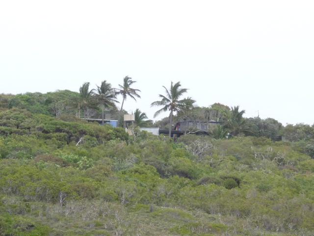 Tin Can Bay, Australia P1010911
