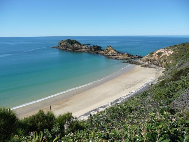 Tin Can Bay, Australia P1030110
