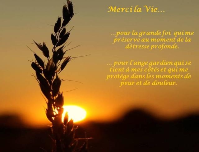 Merci la vie Merci_10