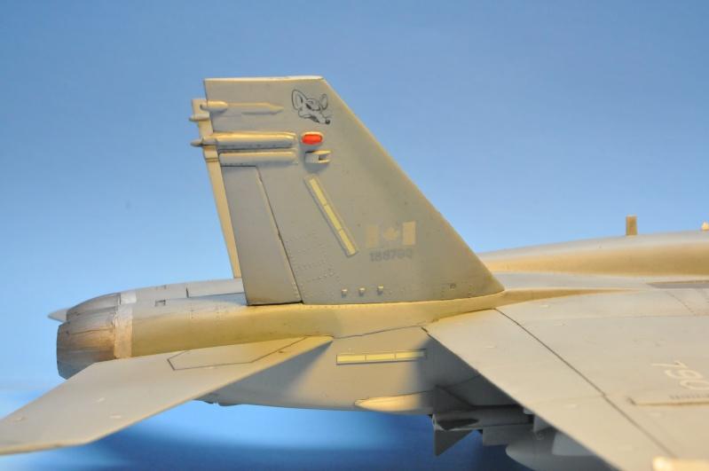 CF-18A - Revell 1/48 Dsc_8128