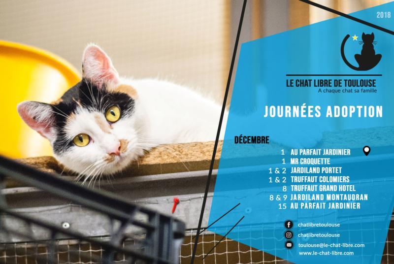 Le planning 2018 des journées adoption Journz28