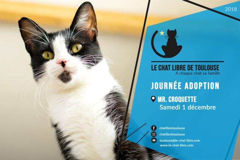 [Adoptions] Mr Croquette à Roquettes - samedi 1er décembre 2018 Journz30