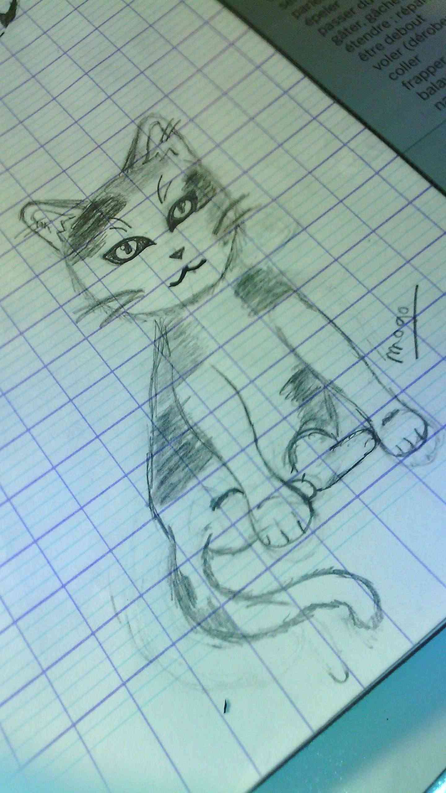 mes Premier dessin Img_2012
