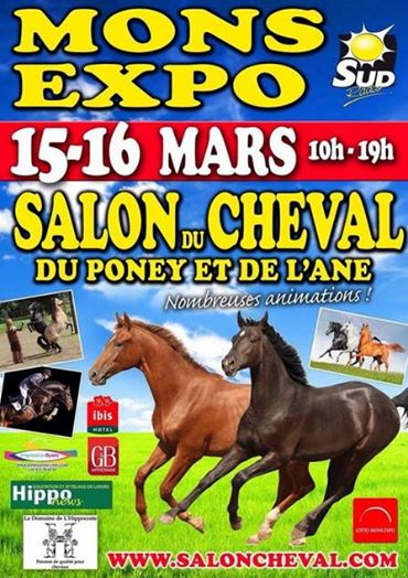 Salon du cheval à Mons Salons10