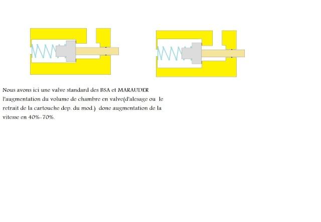Le principe PCP - Page 4 Pravel12