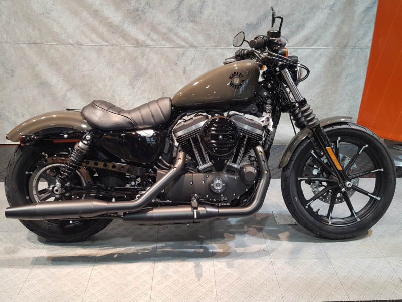 Harley Sporster 883 XLH au 1/9 60000010