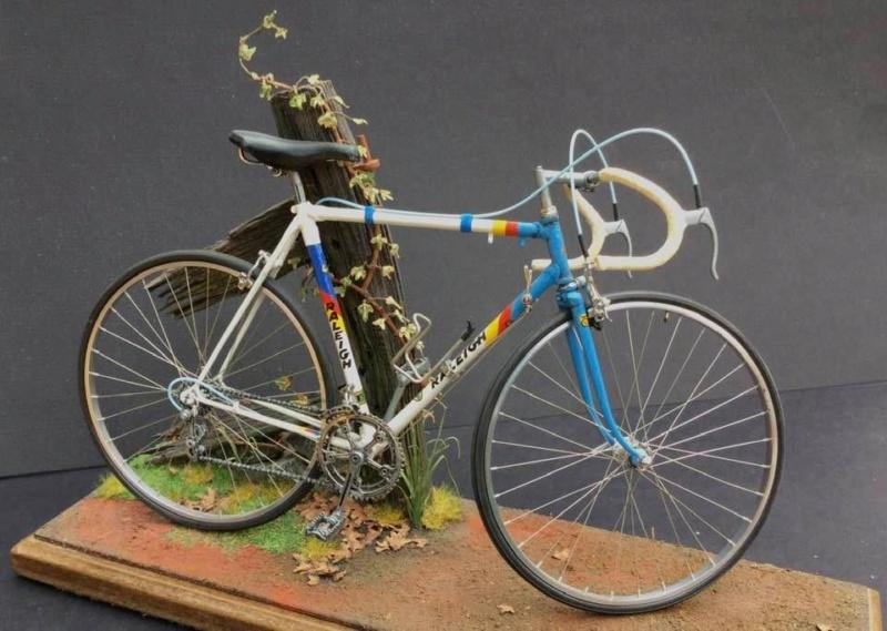 Vélo Raleigh, Protar 1/9e Gary_s11