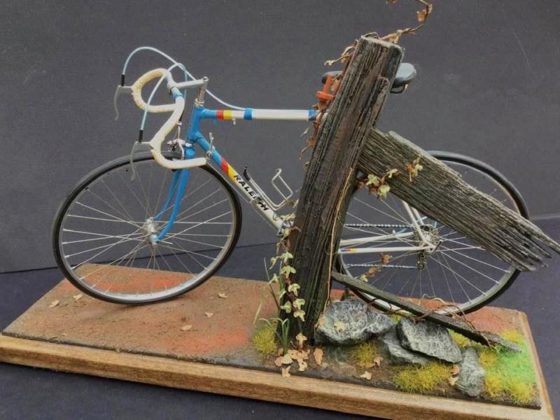 Vélo Raleigh, Protar 1/9e Gary_s12
