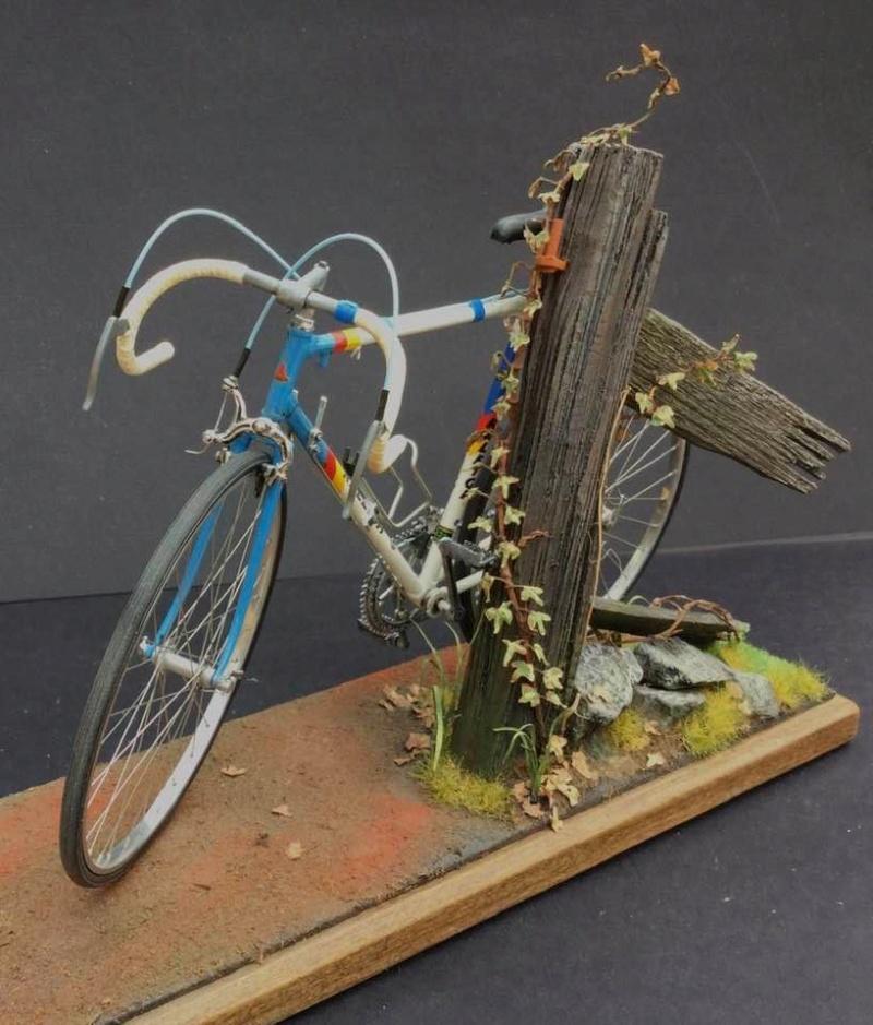 Vélo Raleigh, Protar 1/9e Gary_s13