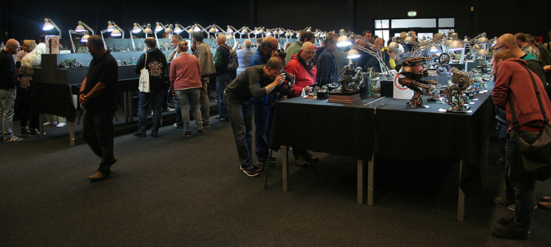 Le Scale Model Challenge 2016 à Eindhoven, Hollande Img_8810