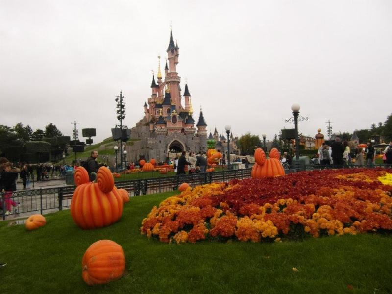 concours photos Walt Disney! Saison1: thème 10: étonnez-moi! (dernier thème avant la saison 2 - Page 4 55424910