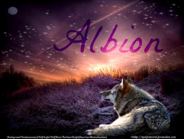 Albion - An Elemental Wolf RP Imagee11