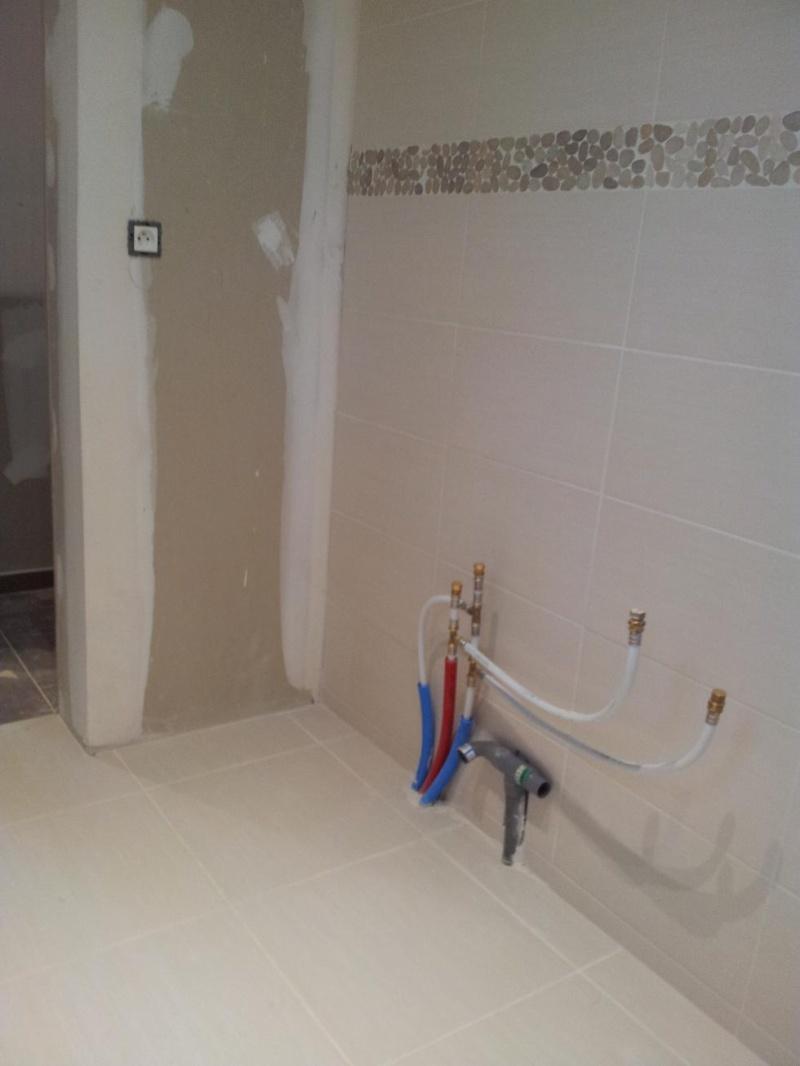 Salle de bain : peintures 2013-114