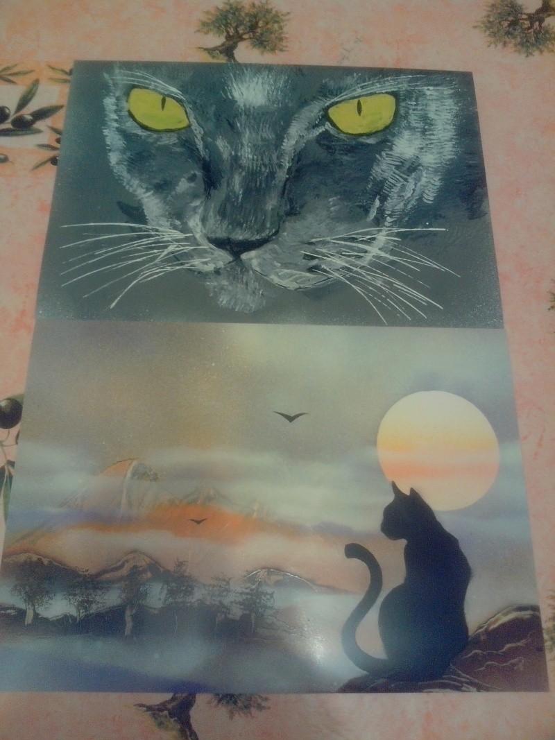 les chats... Img_2013