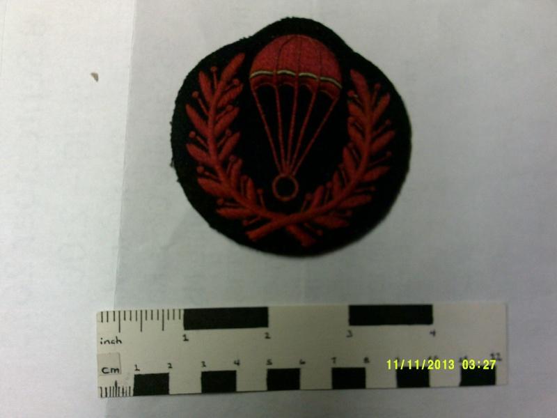 Unknown Para Jump Instructor Badge Dscf0024